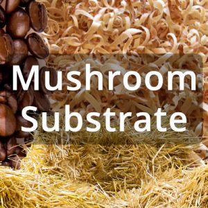 What is mushroom substrate?